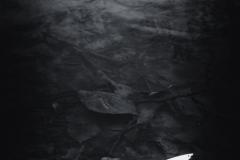 emil-pokropek-1819-039