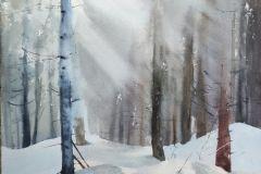 30-Katarzyna-Bukowska-W-zimowym-lesie-akwarela-41x31cm