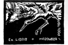 17-grazyna-modzelewska