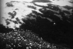 agnieszka-antosik-teneryfa-foto-2020-02