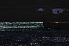 gerard-wasiak-foto-teneryfa-2020-04