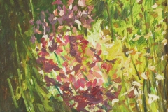 fioletowe-kwiaty