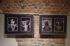 wystawa-przemka-konefała-krosno-092020-14