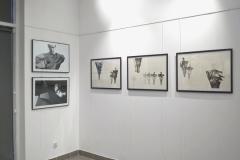 wystawa-pauli-nazarczuk-120419-31