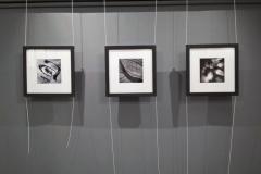 wystawa-ryszard-pekala-040119-11