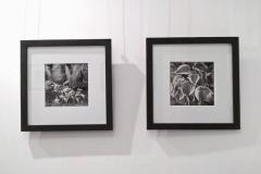 wystawa-ryszard-pekala-040119-15