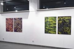 wystawa-tomasz-drezler-241118-05