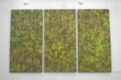 wystawa-tomasz-drezler-241118-16