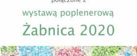 zakończenie roku 2020/21 połączone z wystawą poplenerową 2020